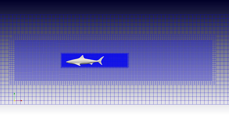 Mesh OpenFOAM CFD simulation